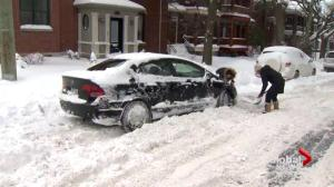 Montrealers dig out after winter snowfall