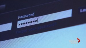 Police say new password email scam is not a real threat
