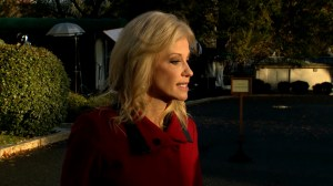 Kellyanne Conway says people can immigrate legally at border, speaks out against caravan