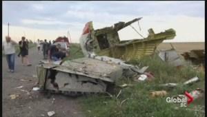 Malaysia Airlines flight shot down over Ukraine