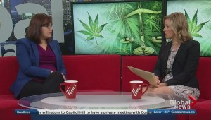 Have your say on cannabis legalization