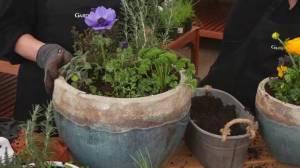 GardenWorks: Herb Planter