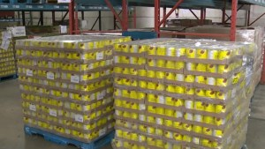 Fighting hunger through food banks