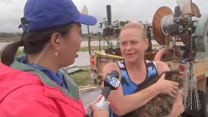 Texans react to losing their homes and business after Hurricane Harvey