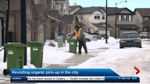 Calgary councillor suggests less frequent green cart pickup in winter