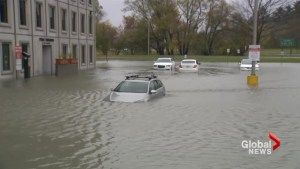 Ottawa continues to be flooded by record precipitation