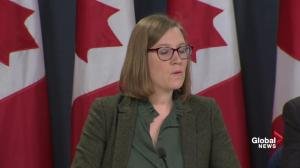 'Naive' to assume Canada not a target for election interference: Gould