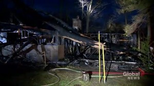 Firefighters on scene after Toronto-area home burns down following tree collapse