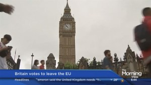 The impact of Britain's vote to leave the EU