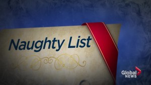 Who made the naughty and nice list according to Canadians