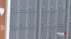After two years, swastikas still on community mailboxes