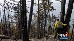 Parks Canada still active on Verdant Creek wildfire