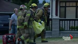 7 dogs and 2 cats perish in tragic Burnaby house fire