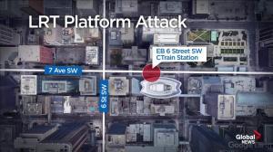Calgary LRT platform attack