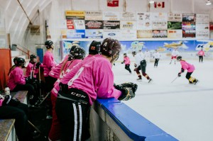 Skate Pink's growth over the years