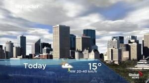 Edmonton early morning weather forecast: Monday, June 24, 2019