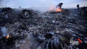 One year since Malaysia Airlines Flight MH17 shot down over Ukraine