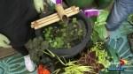 Gardenworks: Water garden planter