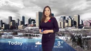 Edmonton early morning weather forecast: Friday, November 9, 2018