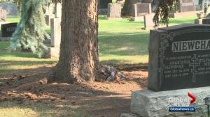 Red tape and permission creates burial plot confusion