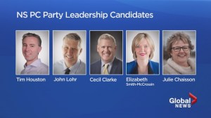 Nova Scotia Tories gear up for leadership race that includes historical first