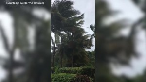 Strong winds build up in Caribbean as Hurricane Maria approaches