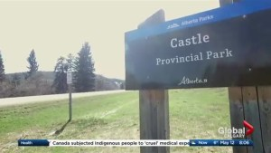 Castle Provincial Park offers a new alternative