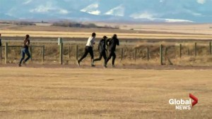 Blood Tribe running club wins national contest