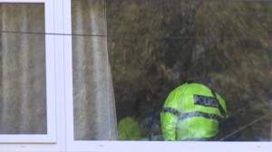 New Zealand shooting: Home of suspect searched in Dunedin