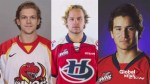 Lethbridge Hurricanes centre Ryan Vandervlis in medically induced coma following fire at party