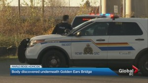 Shocking discovery made underneath the Golden Ears Bridge in Maple Ridge