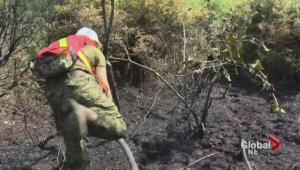 More firefighters and military battle stubborn bog fire in Richmond
