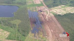 Nexen says 'failsafe' system didn't detect Alberta pipeline