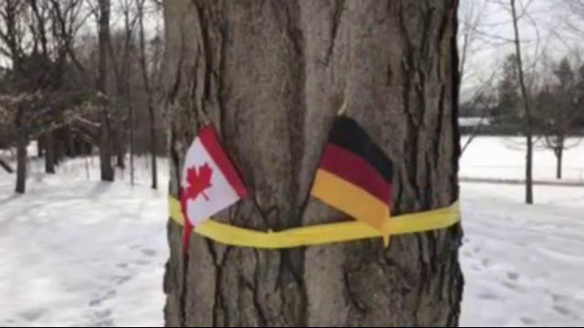 german flag the -#main