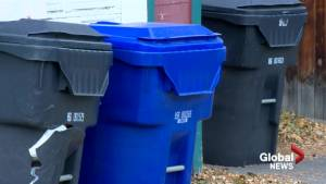In 5 months, Lethbridge curbside recycling collects 34K kg of material (01:59)