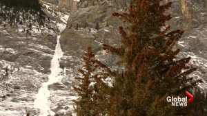 Calgary ice climber dies after fall in Banff National Park