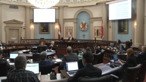 Kingston city council votes to allow cannabis shops in the city