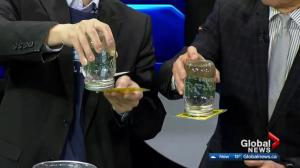 Cool Science: Water suspension 'magic' trick