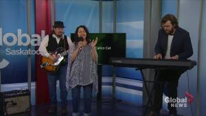Big Fat Calico Cat performs 'Stumble to the Ferry '