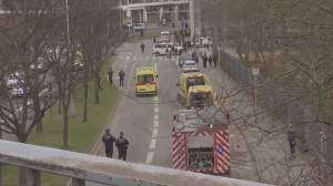 Belgium attacks: At least 28 dead in multiple blasts