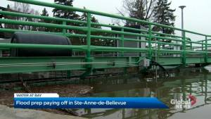 Sainte-Anne-de-Bellevue escapes major flooding for now (02:02)