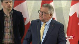 Goodale says gun control controversy in the US shouldn't effect Canada