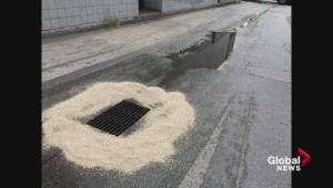 Grease spill in downtown Kelowna alley