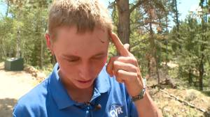 Teen wakes to bear biting his head in Colorado park