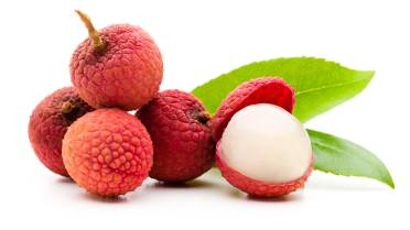 Lychee fruit to blame for mystery illness killing children