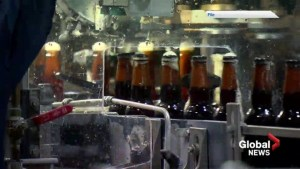 Lethbridge brewery questions fairness for inter-provincial trade