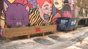Montreal restaurant owner fights back against urban trash