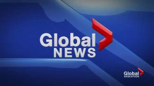 Global News at 6: November 12