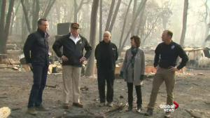Trump on California wildfires: 'we gotta take care of the floors, you know, the floors of the forest'