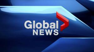 Global News at 6: Aug. 13, 2019